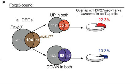 The chromatin-modifying enzyme Ezh2 is critical for the maintenance of regulatory T-cell identity.jpg