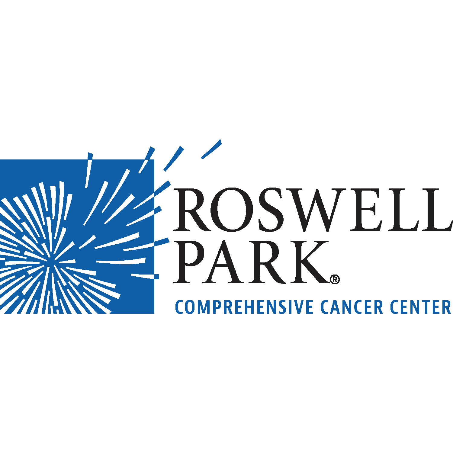 Gaurav gives talk at Roswell Park Cancer Center